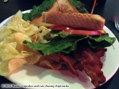 Briarcliff Bistro & Bacon Bar - Spicewood, TX   Mon chat m'a ramené un chipmunk !
